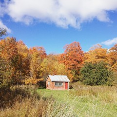 Sugar shack (jessalynn_sammons) Tags: iphone sugarshack shack fallcolour autumncolour colours fall autumn red