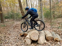 2018 Bike 180: Day 190 - Fun With Logs (mcfeelion) Tags: cycling bike bicycle bike180 2018bike180 wakefieldpark annandaleva autumn mtb