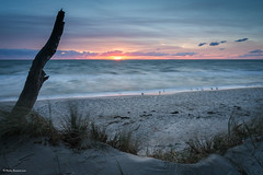 Peaceful end of the day on the beach (He Ro.) Tags: 2018 balticsea ostsee zingst fischlanddarszingst darswald weststrand sonnenuntergang sunset peaceful tranquil sand beach water möwen seagulls deutschland mecklenburgvorpommern de halbinsel peninsula ngc