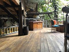ambiance-café-parisien© (alexandrarougeron) Tags: photo alexandra rougeron assise urbain ville paris