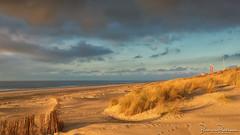 Maasvlakte 2 Dunes and Beach (BraCom (Bram)) Tags: 169 bracom bramvanbroekhoven holland maasvlakte maasvlakte2 nederland netherlands noordzee northsea southholland zuidholland beach branding cloud duinen dunes helmgras palen poles sand sea sky strand sunset surf widescreen windbreak windscherm wolk zand zee zonsondergang nl