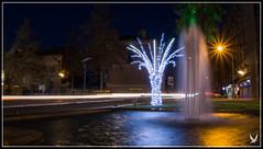 _MG_6455 (Celtycrow) Tags: photodenuit montaubanbynight poselongue montauban noël christmas christmaslight