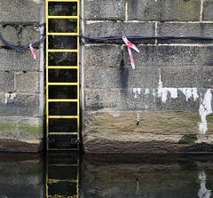 untitled (managerri) Tags: gerri managerri ac stairs abstract water ladder thames