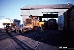 4017 T1801 Bunbury Wagon Depot 7 September 1983 (RailWA) Tags: railwa philmelling westrail bunbury 1983 t1801 wagon depot