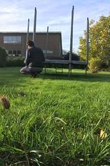 winter set up (domit) Tags: jay house rental trampolin garden wemmel belgium