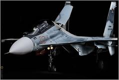 Сухой Су-30СМ / Sukhoi Su-30SM (FoxbatMan) Tags: сухой су30см sukhoi su30sm вкс россии russian air force