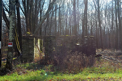 Stone Foundation (rchrdcnnnghm) Tags: foundation ruin abandoned sullivancountyny