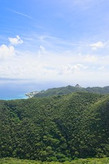Views from Awadake Summit (neil.dalphin) Tags: yellow hiking awadake okinawa forest mountain view views japan green blue sky sunshine sunny