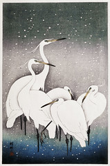 Group of Egrets (1925 - 1936) by Ohara Koson (1877-1945). Original from The Rijksmuseum. Digitally enhanced by rawpixel. (Free Public Domain Illustrations by rawpixel) Tags: pdproject21batch2x otherkeywords tagcc0 animal antique art asian bird drawing egrets illustration japan japanese koson museum ohara oharakoson old paint rijksmuseum vintage