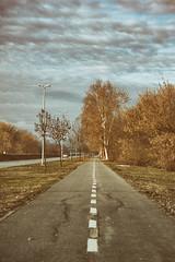 Walkin' On Down The Road