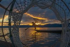 The Net Fisherman of Inle Lake Burma. (Tacksoon) Tags: myanmar2018 inlelake lake inle burma fisherman net sunset