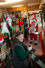 Lisa Johnson Photographing Pip and Santa (Laura Erickson) Tags: lisajohnson stlouiscounty pip people duluth friends family matildasdogbakery places minnesota havanasilkdog thunderroadspip