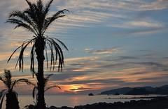Otoño en la Costa Tropical (Tomás Hornos) Tags: palmeras beach playa espigón atardecer sunset seascape landscape sky cielo costatropical clouds costa costagranada mar sea puestadesol d7100 fisedlens 35mm 35 mediterráneo mediterranean primelens