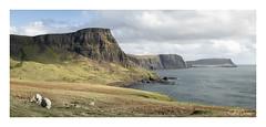Scottish coast line (GJ Duncan Photography) Tags: isleofskye scotland skye cliffs cliffface sea panorama clouds sheep visitscotland discoverscotland scottishhighlands rugged landscape westofscotland scottishisles