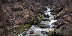 40 Mile Creek Grimsby Ontario 2018 (John Hoadley) Tags: 40milecreek grimsby ontario 2018 beamerfalls december canon 7dmarkii 1740 f18 iso100 waterfalls