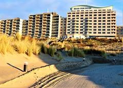 2018 - 11 Noordwijk (Steenvoorde Leen - 11.3 ml views) Tags: 2018 noordwijk noordwijkaanzee strand beach kust kuste huisterduin badplaats zuidholland