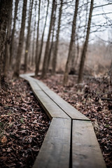 Morning walk (jfl1066) Tags: southbrunswicknj middlesexcounty winter nj davidsonsmill centralnj njoutdoors newjersey jan19