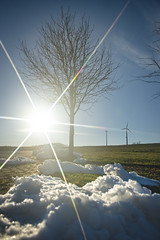 Winter sun (Martin Bärtges) Tags: sun sunshine sonne sonnenschein star stern himel blau sky blue winter colorful farbenfroh snow schnee drausen outdoor outside nikon nikonfotografie nikonphotography tree baum landscape landscapelovers d4 landschaft landschaftsfotografie weitwinkel wideangle