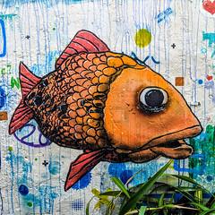 A fish on a wall (id-iom) Tags: fish wall graffiti stencil paint urban art