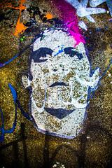 Take a Walk on the Wild Side (Thomas Hawk) Tags: america bayarea california loureed mission missiondistrict sf sfbayarea sanfrancisco usa unitedstates unitedstatesofamerica westcoast graffiti stencil fav10 fav25