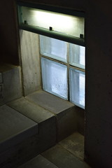 DSC_0264 (Ainsley Moffat) Tags: school brutalism window staircase stairs