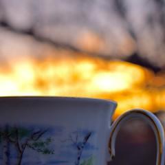 sunrise brew (ladybugdiscovery) Tags: brew coffee morning sunrise dawn bokeh macro