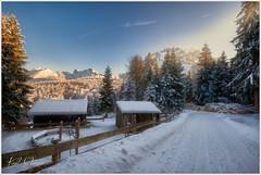 Winterspaziergang III (Karl Glinsner) Tags: landschaft landscape österreich austria oberösterreich upperaustria outdoors winter schnee snow trees bäume grünberg gmunden berge mountains traunstein