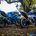 Yamaha-R3-vs-Kawasaki-Ninja-300-24