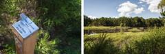 Place camera here (Guillermo Relaño) Tags: guillermorelaño nikon d90 scotland escocia highlands cairngorms nationalpark