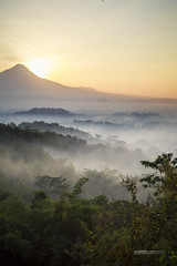 INDONESIA_2522_0818@ANDREAFEDERICIPHOTO (Andrea Federici) Tags: indonesia andreafedericiphoto travel travelling java bali flores nature people traveller holiday