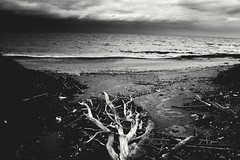 MG1566 (eleni.makrydaki) Tags: seaside coastpath cloudysky sea bwphotography seascape
