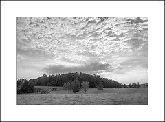 Cloud Over Hill 2 (David in NC) Tags: clouds morning pasture dairy dawn pastoral black white