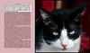 Conrad, commanding (JonathanMorse) Tags: cat theniggerofthenarcissus joseph conrad