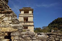 DP0Q3101 (gokselbt) Tags: chiapas aquaazul palenque