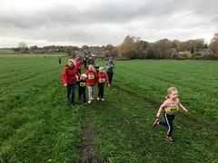 Haarlerbergloop 1 km (31)