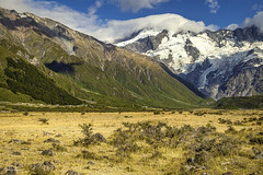 New Zealand (Ed Kruger) Tags: 2018 allrightsreserved aotearoa edkruger millakruger nz newzealand northisland southisland abaconda blue clouds cook copyrights flowers glacier january kirillkruger kiwi mountcook mountains mtcook qfse rodkruger sky sun travel travelphotography yellow mountcooknationalpark canterbury