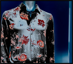 dandified (Patricia Colleen) Tags: mannequin solarized windowdisplay shirt floral
