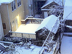 Year The First Snowstorm (dimaruss34) Tags: newyork brooklyn dmitriyfomenko image snowfall buildings porch stairs fence flowers