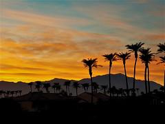 Palm Springs Vista (moonjazz) Tags: sunset desert california sky orange palms photography color pure silhouette palmsprings vivid montains san jacinto clear trees light vista landscape geography senic inspiration
