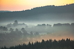 two escape (Wöwwesch) Tags: sunrise layers birds hills landscape morning first rays trees forest wood colors valley mist shimmer light silence flight walk