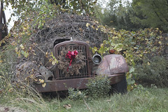 Roadside Relics (Sean M Richardson) Tags: abandoned autocar relics rust car vintage decay details christmas green red canon photography 50mm texture old vehicle vines