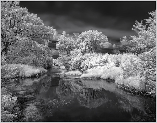 Prairie Creek by Marcia Nye-Honorable Mention Class A Prints-November 2018
