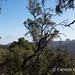 In the distance, El Teide