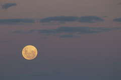 Moon Rise  20-1-2019 (Ce Rey) Tags: moon luna rise salidadelaluna lunallena sky sunset atardecer cielo nubes magenta canoneos80d clouds astronomy astronomía fullmoon 2012019
