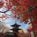 Pagoda framed in Red