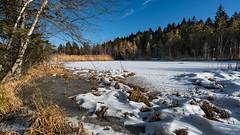 Etang des Bugnons (Switzerland) (christian.rey) Tags: etang bugnons fribourg swiss hiver sony alpha a7r2 a7rii 1635 paysage landscape gruyère