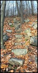 The 300 Stone Steps of Morris Plains (Markus Alydruk) Tags: mountainwaypark 300stonestepsofmorris 300steps steps stairs path trail hiking legendary folklore hidden lost abandoned ruins nj newjersey morriscounty morrisplains morris