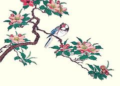 Hall crabapple and Java sparrow (Japanese Flower and Bird Art) Tags: flower hall crabapple malus halliana rosaceae bird java sparrow padda oryzivora estrildidae ukiyo woodblock picture book japan japanese art readercollection