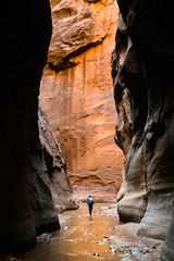 Orderville Canyon (Colin Campbell Photography) Tags: narrows ordervillecanyon ordervillejunction zionnationalpark