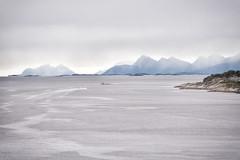 Fun (BlossomField) Tags: fjord mountain sea bodø nordland norwegen nor